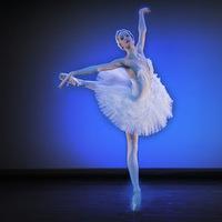 Taneční konzervatoř Brno